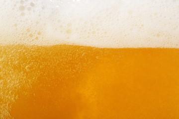 ビール イメージ Beer image