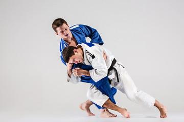 The two judokas fighters fighting men Wall mural