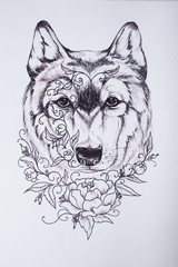 Wolf Sketch in the chart on white background