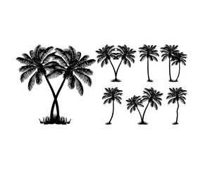Set Tropical Island Palm Trees Black silhouettes Vector Logo Design