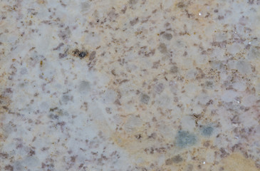 The surface of marble
