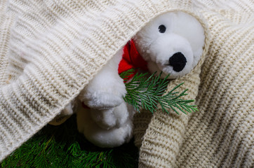 Teddy bear in a blanket waiting for Christmas