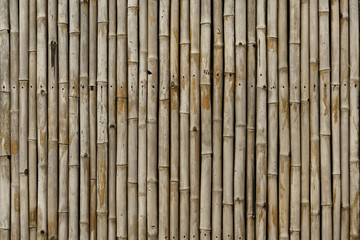 Bamboo fence, Siem Reap, Cambodia