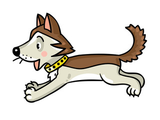 Funny little husky dog.