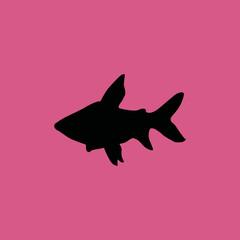 fish icon. flat icon illustration isolated sign symbol