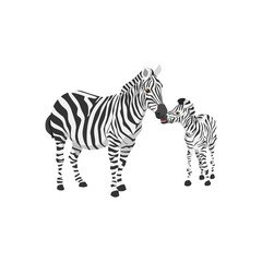 zebra kiss her cute son
