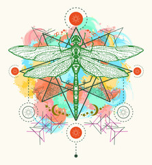 Dragonfly color tattoo vector.Hand drawn mystical symbols