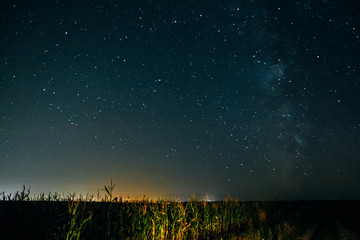 Milky Way over the field
