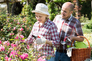 Couple looking after flowers in the garden