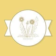 Dandelion medicine plant, yellow label design in circle shape. Vector illustration