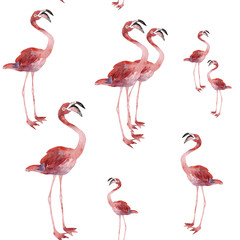 Seamless pattern of flamingo on a white background, watercolor