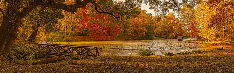Autumn scene at the lake in park. Lipnik (Teketo) park, Nikolovo village area, Ruse district, Bulgaria, 7frame.