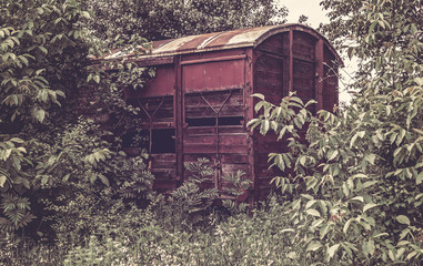 Old railway wagon derelict captured by nature