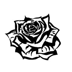 художественный,эскиз,тату,цветок роза,