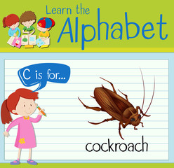 Flashcard letter C is for cockroach