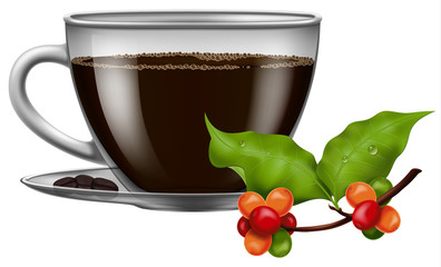 Coffee cup with roasted beans and fresh green coffee branch. Vector illustration.