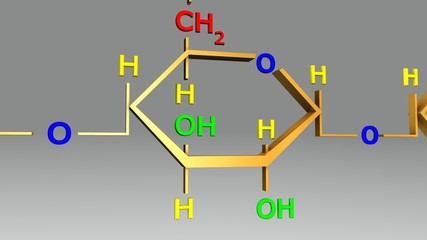 Amylopectin structure