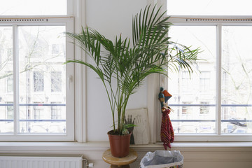 a plant in a bedroom