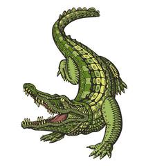 Crocodile or Alligator. Animal in ethnic style. Vector illustration