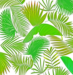 mix palm leaf tree background
