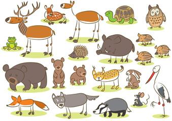 European animals kids drawing