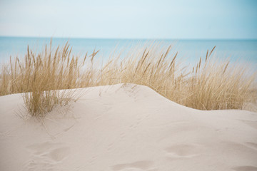 Beautiful white sand dunes at the sea beach Wall mural