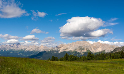Val di Fiemme, Italy, summer lanscape with Dolomites  Alps in background.