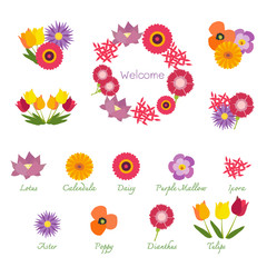 Tropical Flowers Isolated with Names, Showing in Bouquets and a Garland