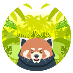 Red Panda on the Jungle Background