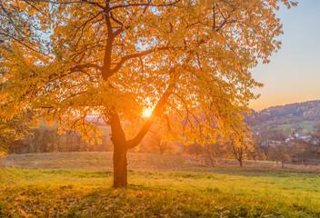 Garden Poster Herbststimmung in der Fränkischen Schweiz