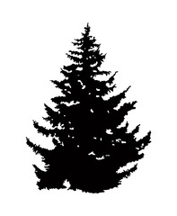 Silhouette of pine tree. Can be used as poster, badge, emblem, banner, icon, sign, decor...