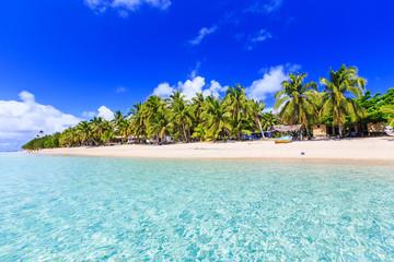 Foto op Canvas Oceanië Beach on a tropical island with clear blue water. Dravuni Island, Fiji.