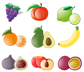 Different types of fresh fruits