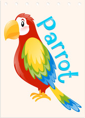 Wordcard with word and picture parrot