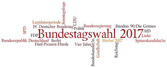 Wordcloud Bundestageswahl 2017