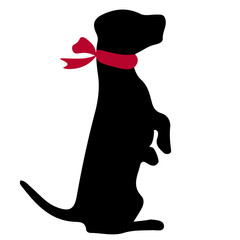 Jack russell terrier. Vector black silhouette on a white background. Illustration of dog breeds