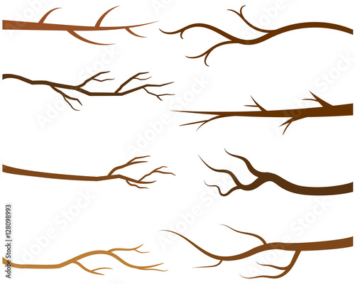 """Brown tree branches without leaves"" Stock image and ..."