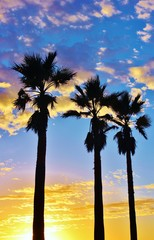 Spectacular sunset beach ocean and clouds