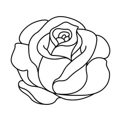 silhouette of black and white rose
