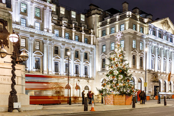 Christmas tree on Waterloo place in 2016, London
