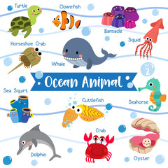Ocean Animal cartoon on white background with animal name. Turtle. Whale. Squid. Crab. Dolphin. Oyster. Clownfish. Barnacle. Cuttlefish. Horseshoe Crab. Seahorse. Vector illustration. Set 2.
