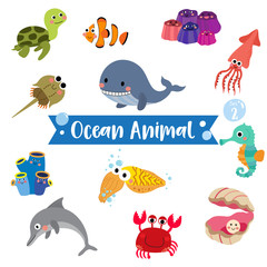 Ocean Animal cartoon on white background. Turtle. Whale. Squid. Crab. Dolphin. Oyster. Clownfish. Barnacle. Cuttlefish. Sea Squirt. Horseshoe Crab. Seahorse. Vector illustration. Set 2.