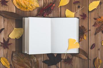 読書と落葉