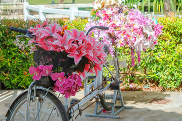 Bouquet of flowers in a bicycle basket