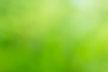green blur background, green abstract