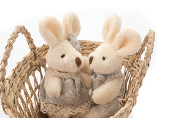 Easter bunny rabbit in a basket on white background