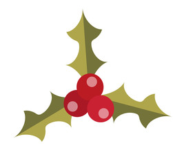 Holly vector icon. Isolated on white background