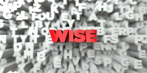 WISE -  Red text on typography background - 3D rendered royalty free stock image. This image can be used for an online website banner ad or a print postcard. Wall mural