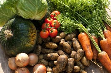 Foto op Plexiglas Groenten 収穫した野菜