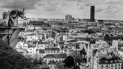Paryż Notre dame chimera